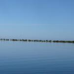 Nyrstar Marine Study Port Pirie